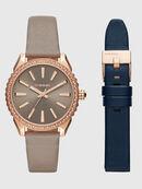 DZ5563, Pink - Timeframes