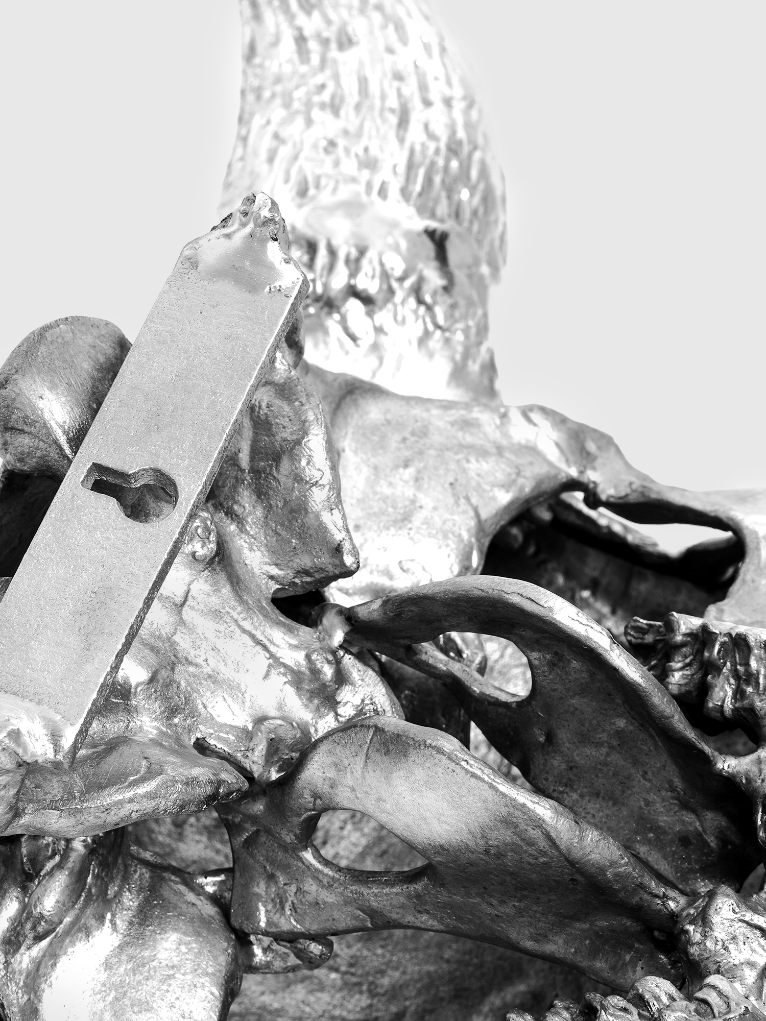 Diesel - 10899 WUNDERKAMMER,  - Home Accessories - Image 8